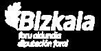 Logotipo diputación Bizkaia